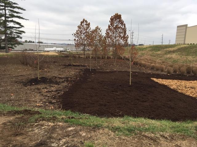 Northstar bioretention systems project in Nashville, TN