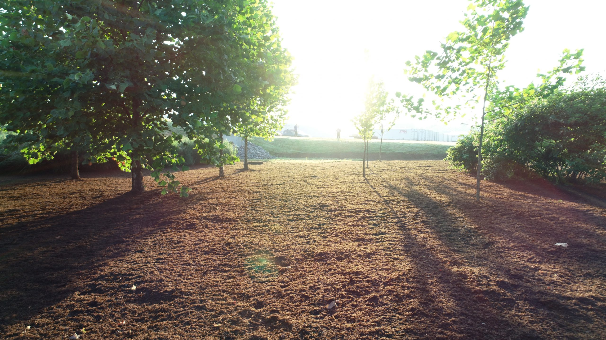 Land Clearing Services, Bioretention Systems and Stormwater BMP Nashville TN