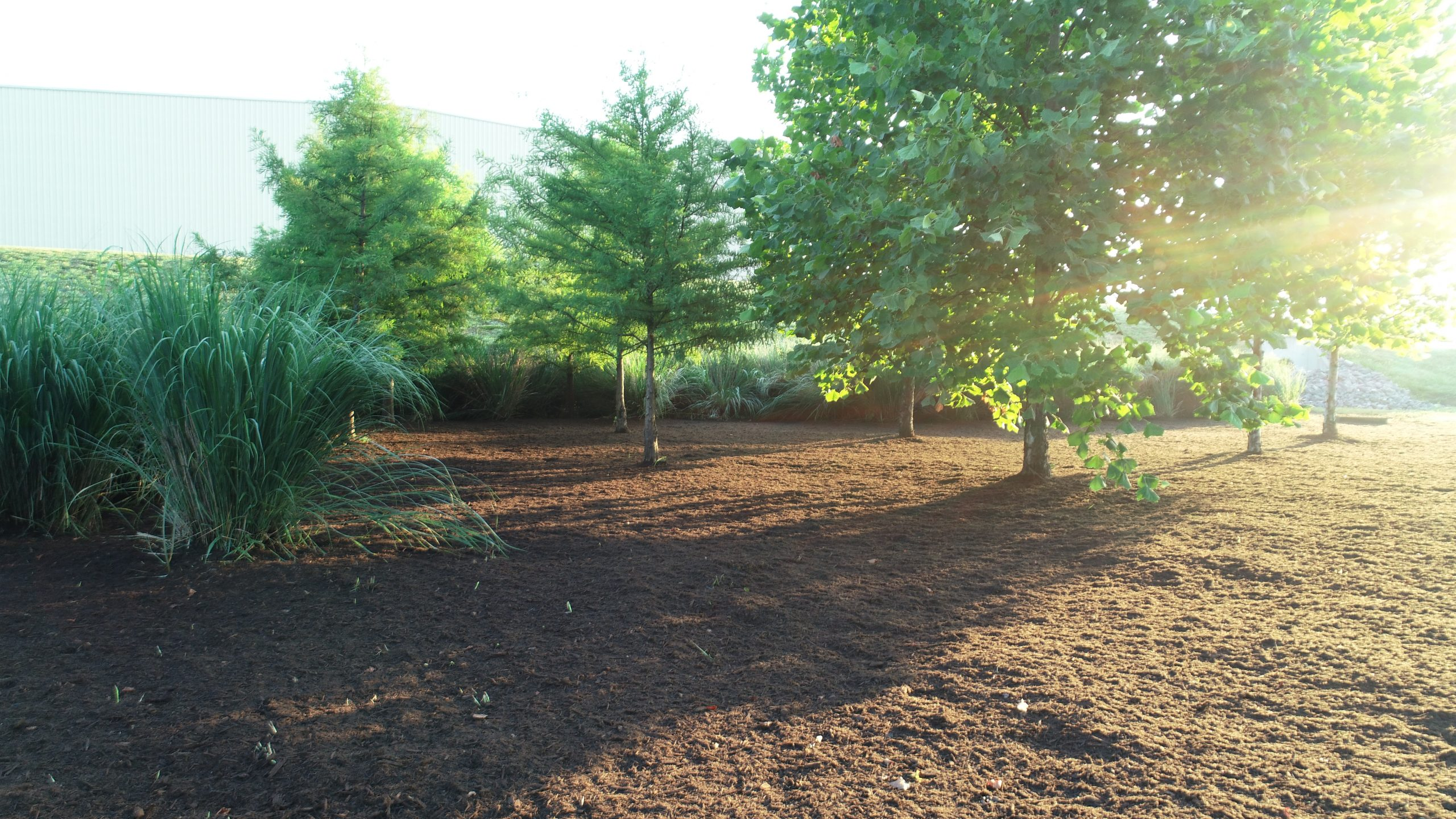 Land Clearing Services and Stormwater BMP Nashville TN