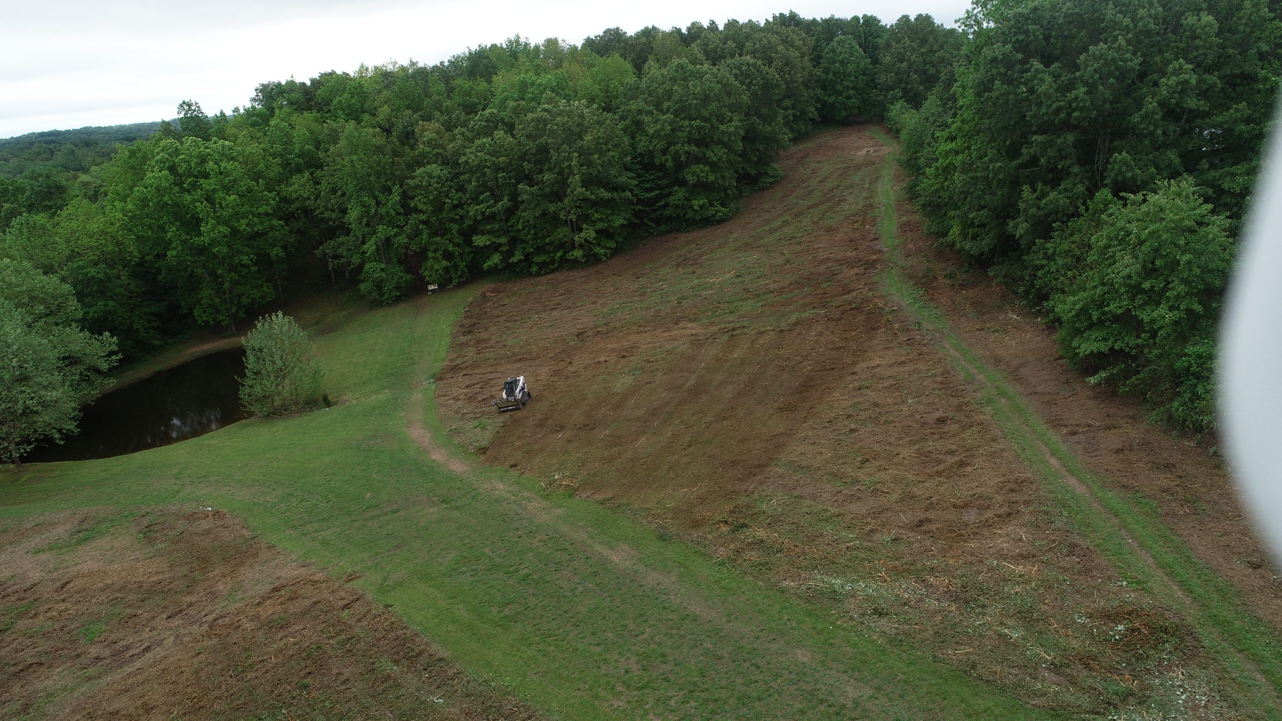 An example of how northstars land clearing services look in nashville tn