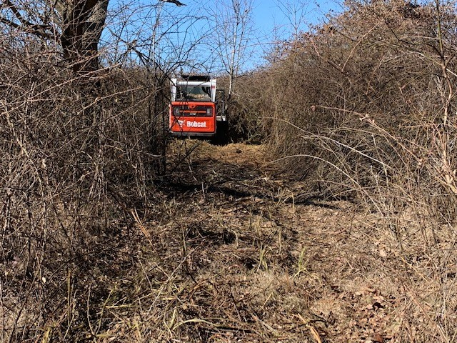 Land Clearing Services with NorthStar in Nashville TN